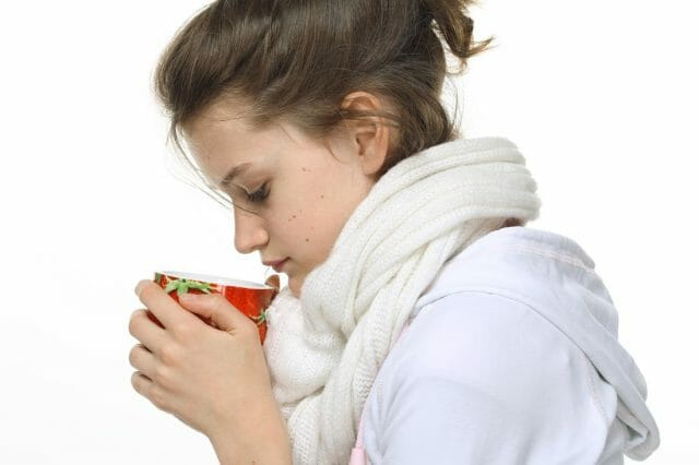 Бузина при простуде