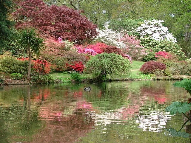 Садовый климат