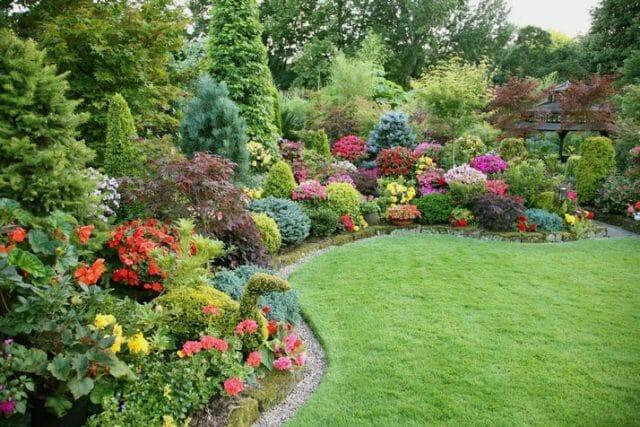Вариант озеленения сада