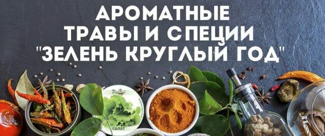 Многообразие вкусов и ароматов пряных трав