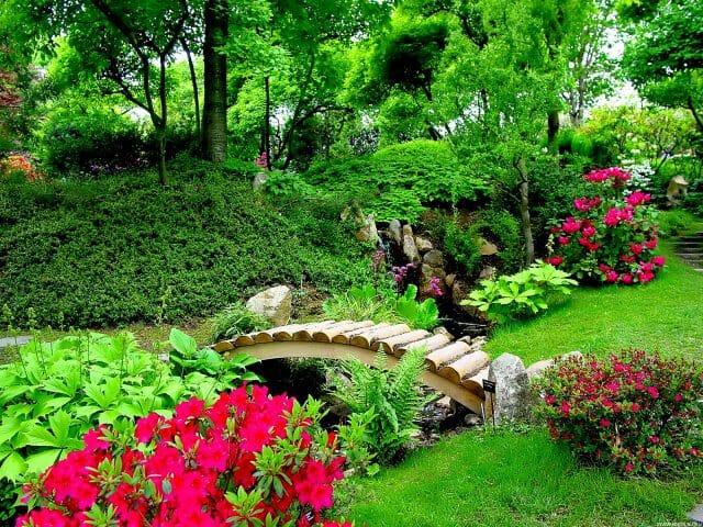 Красота в саду своими руками