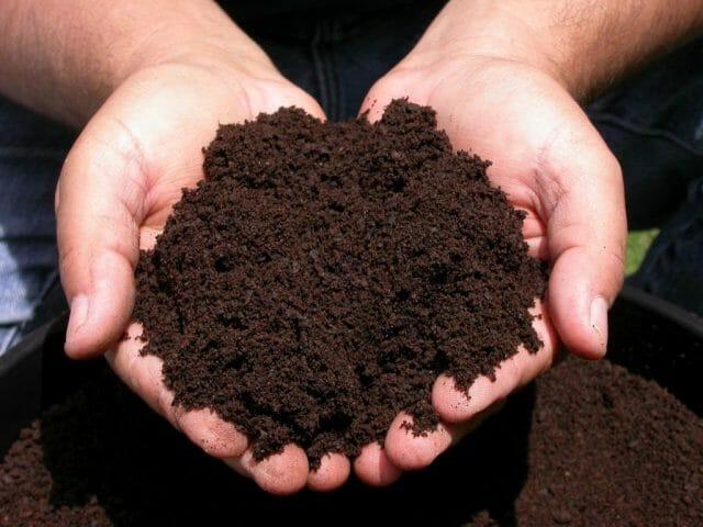 Садовая почва