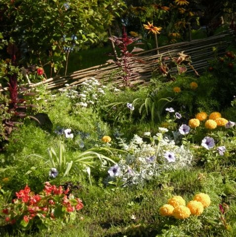А как освежает сад в полуденную жару ручеек