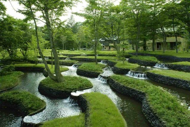 Сад на воде