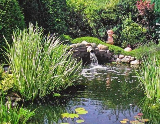 Прохладный оазис в саду