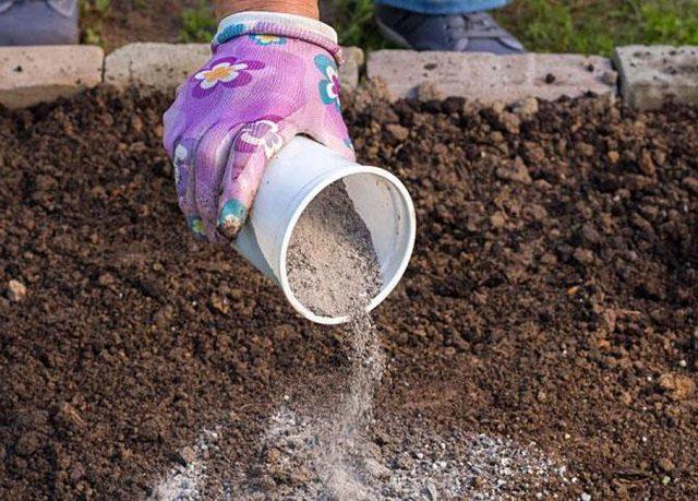 Используем костную муку как удобрение в саду и огороде