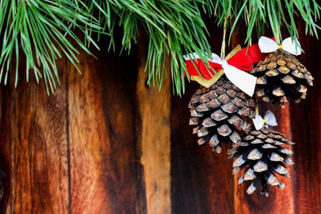 Шишки: поделки, новогодний декор, варенье, ... Идеи, рецепты, видео