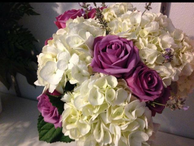 Астра окрашена в розовато-лиловой гамме