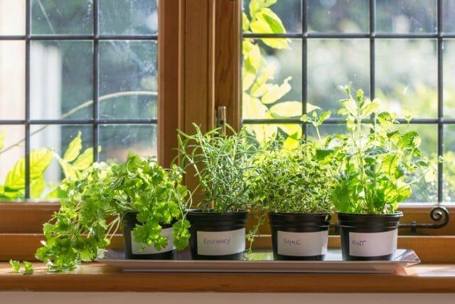 Удобрение для растений