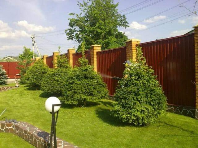 Озеленение сада