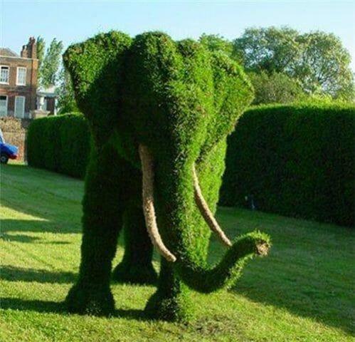 Живые садовые скульптуры