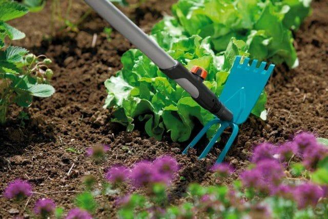 Уход за садовой почвой