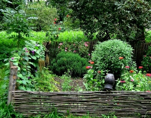Сад деревенский