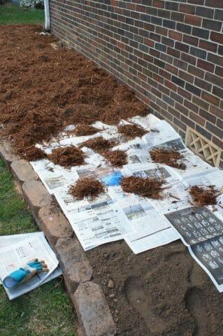 Защитный покров почвы