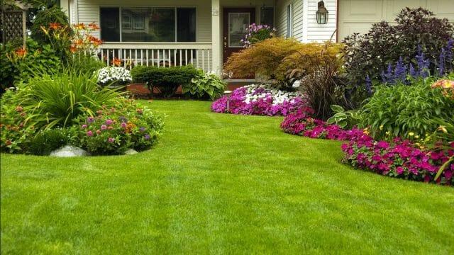 Дом и сад на вашем участке