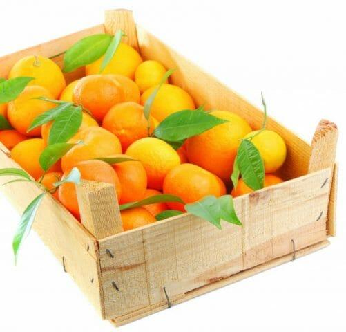 Урожай фруктов из контейнеров
