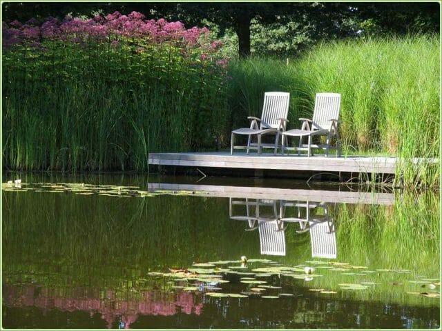 Водный сад с дощатым настилом