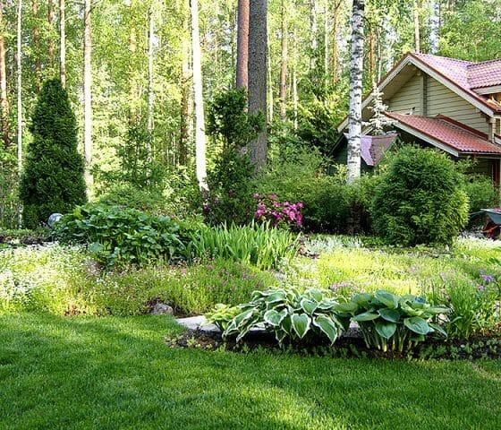 Наиболее подходящий способ в декорирование лесного пейзажа – радиальная планировка
