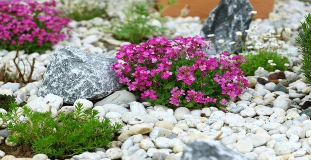Создаем сад из камней своими руками – 5 оригинальных идей