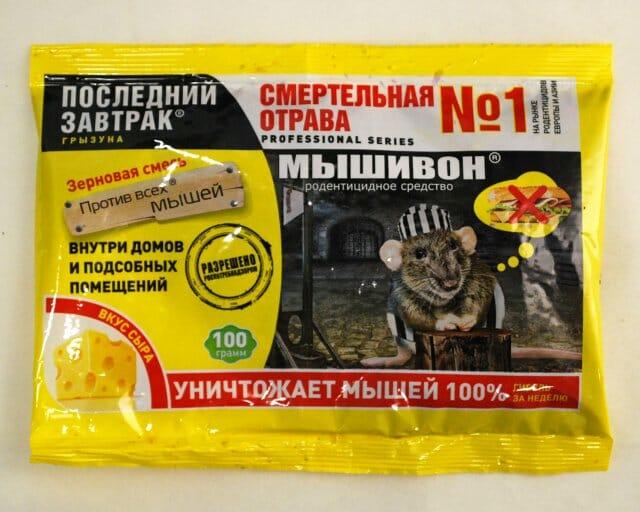 Мыши и крысы в саду, защита сада и борьба с грызунами