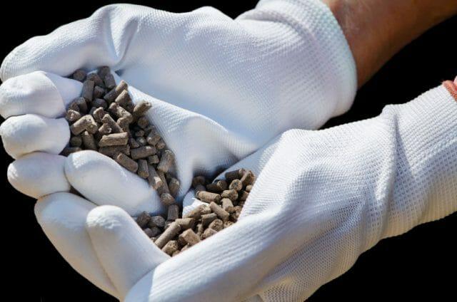 Как добиться плодоношения огурцов до самых заморозков