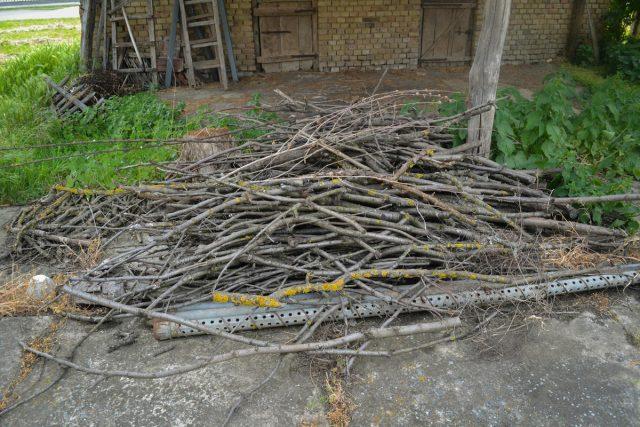 Растительные остатки, несущие опасность для сада