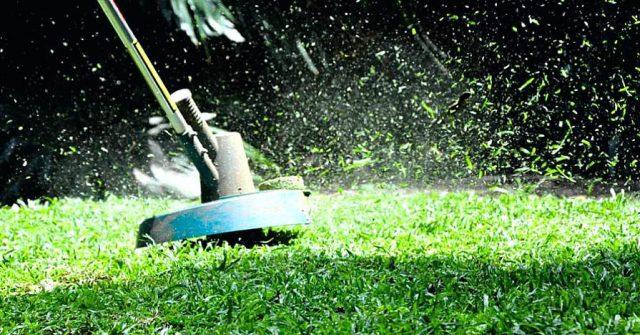 Когда последний раз стричь газон перед зимой